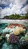 """Utuko Bliss"" XIII, Utuko Reef, Alofi, Niue."