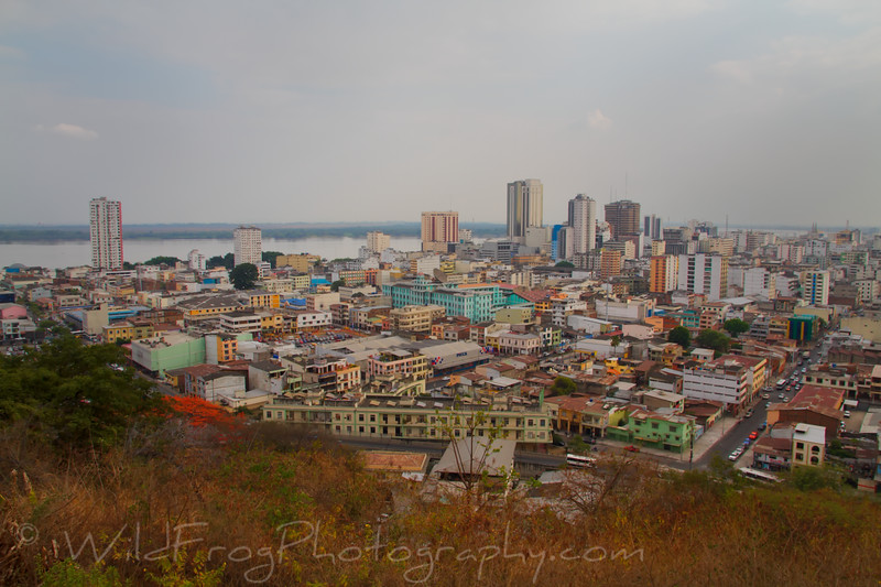 Part of Guayaquil City - Ecuador