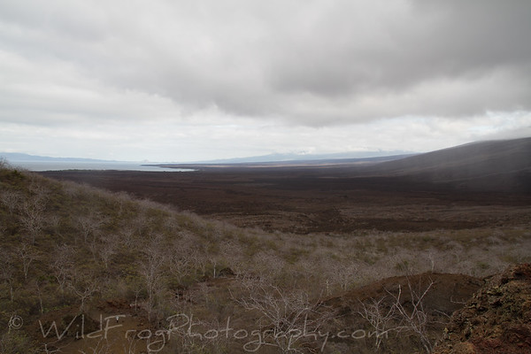 Rain coming in over the Galapagos landscape