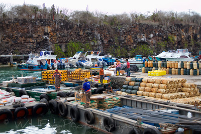 Workman unloading fright from barges in Puerto Ayora - Santa Cruz