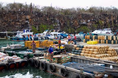 Workman unloading fright from barges in Puerto Ayora - Santa Cruz