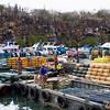 Port of Puerto Ayora
