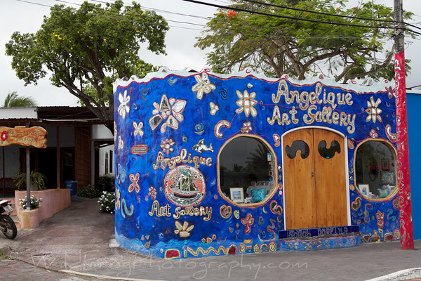 Art Gallery in Puerto Ayora - Santa Cruz Island