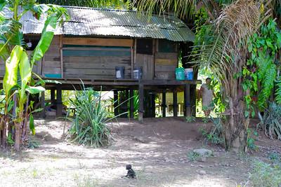 local Home near the river