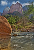 Zion National Park, #0525