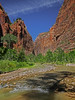 Zion National Park, #0526
