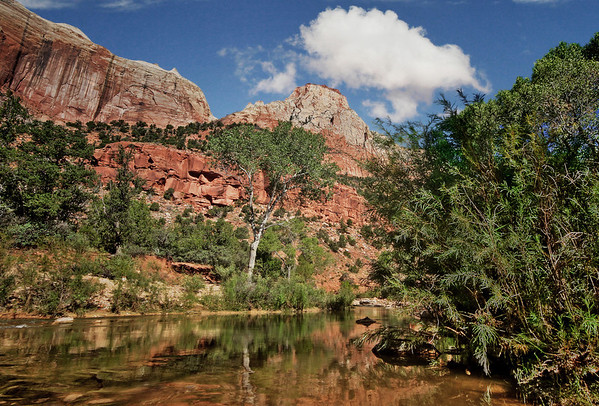Zion National Park, #0537