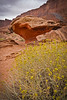 Arches National Park, #0486