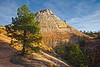 Zion National Park, #0533