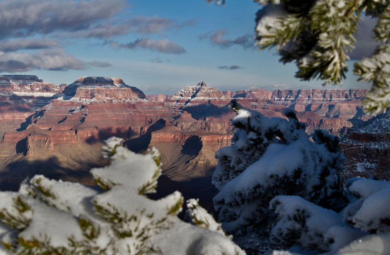 Winter in the Grand Canyon - Arizona: #0300