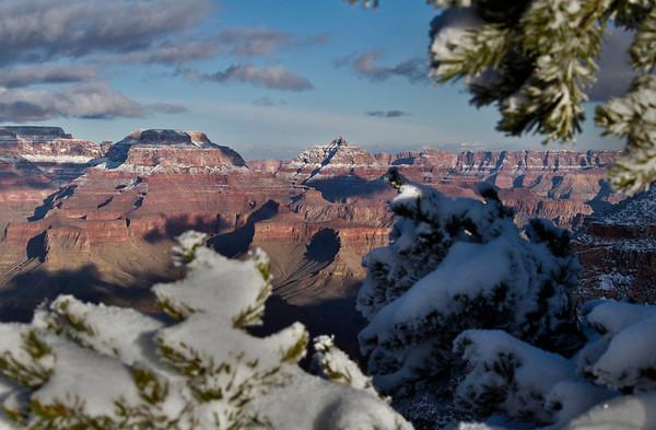 Winter in the Grand Canyon - Arizona: #0300