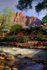 Zion National Park, #0529