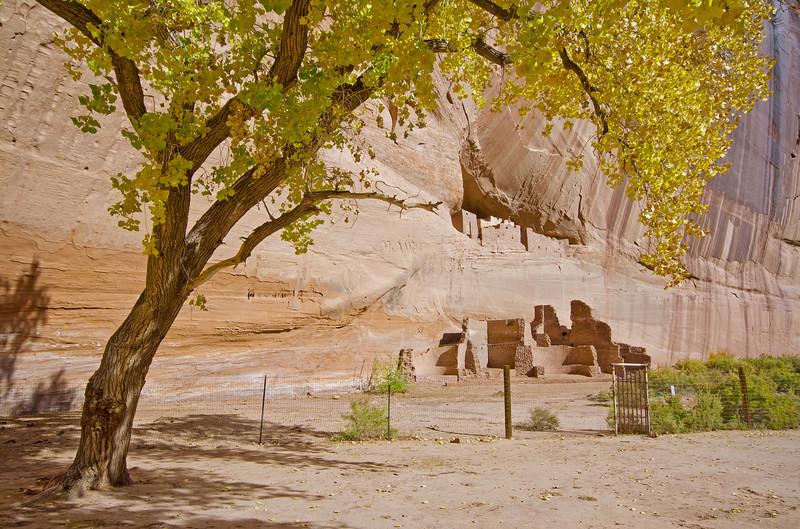 Canyon de Chelly National Monument, Arizona, #0269