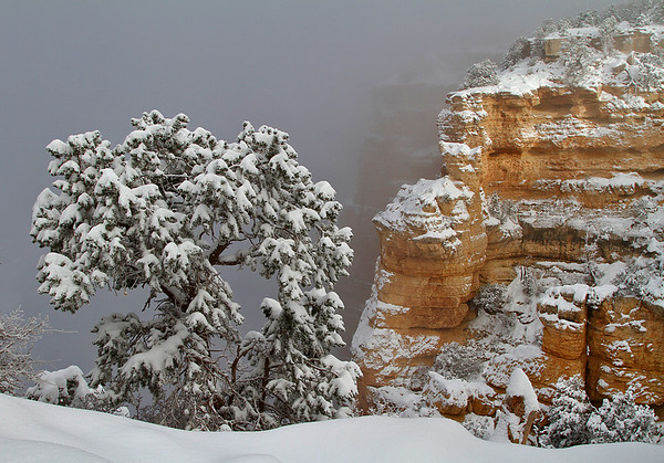 Winter in the Grand Canyon - Arizona: #0310