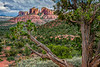 Cathedral Rock of Sedona, #1859