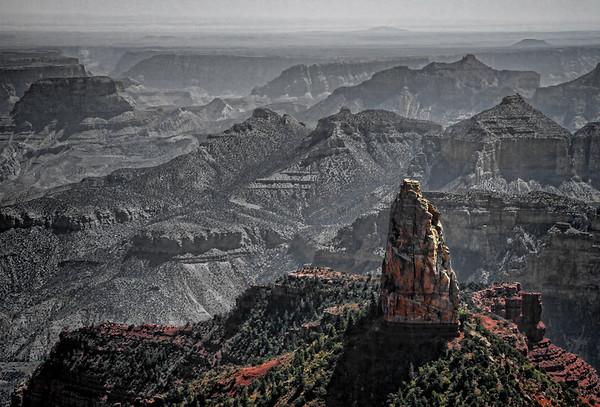 Grand Canyon National Park, north rim, #0548