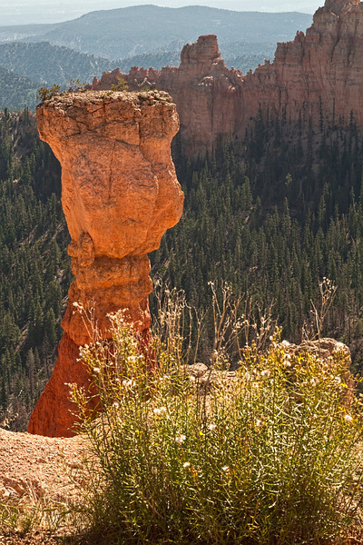 Bryce National Park, #0514