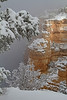 Winter in the Grand Canyon - Arizona: #0311