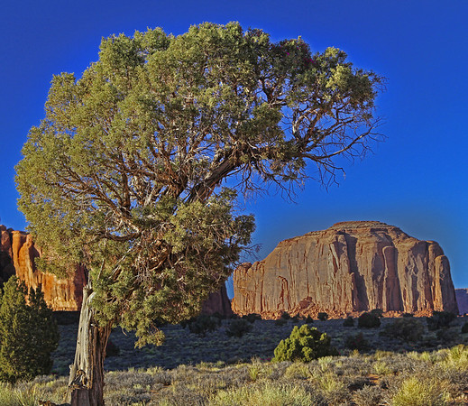 Monument Valley Navajo Tribal Park reservation in Utah, site of many western movies along a 17 mile road, #0276
