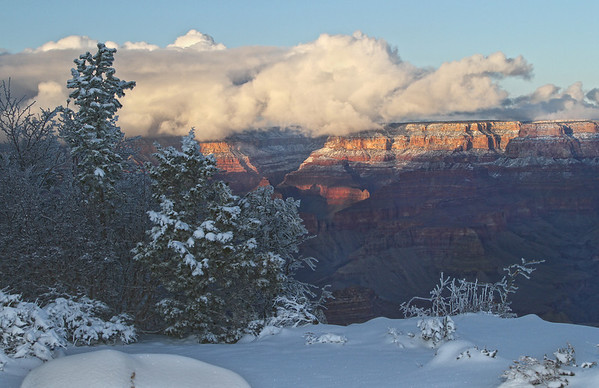 Winter in the Grand Canyon - Arizona: #0306