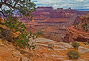 Canyonlands National Park, Utah, #0493