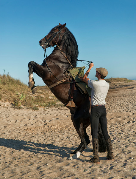 A man and his horse on a beach in Costa De La Luz.<br /> <br /> Andalucia, Spain.
