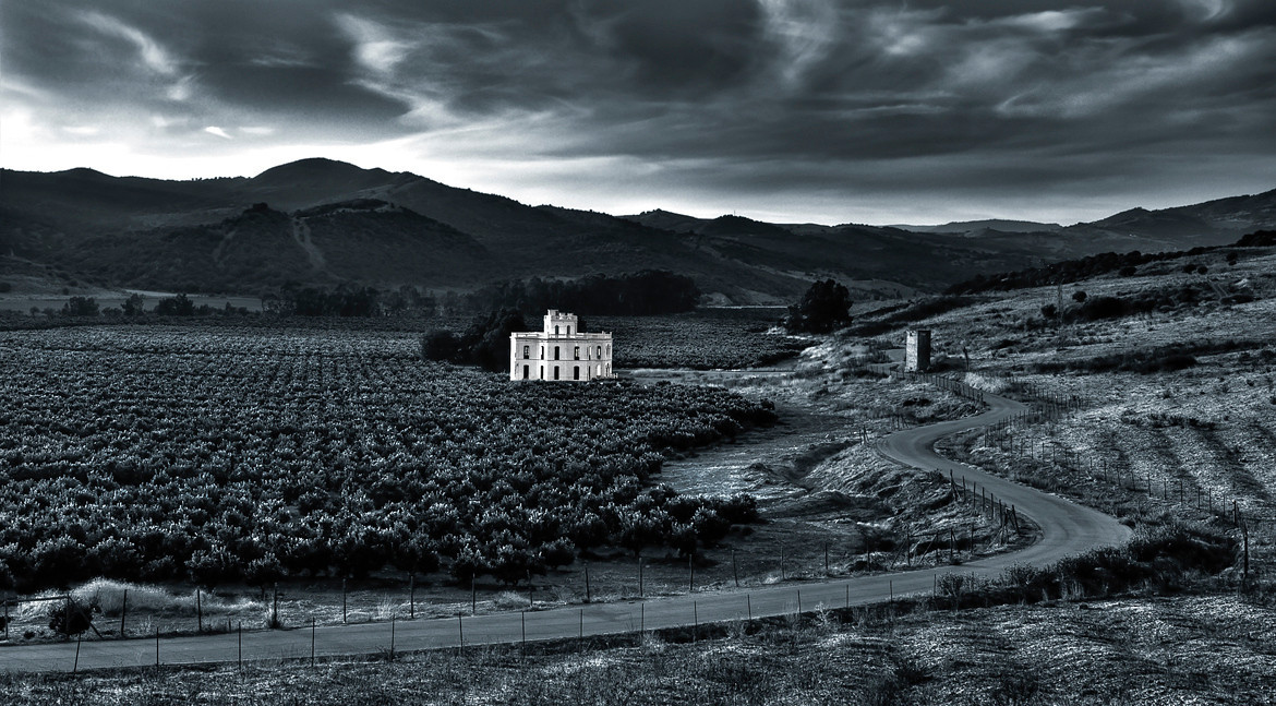 House surrounded by immense orange groves. <br /> <br /> San Martin Del Tesorillo, southern Spain.