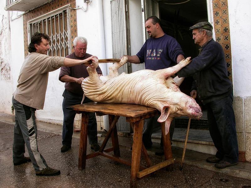 Men preparing a big.<br /> <br /> Cazorla, Jaen, Spain