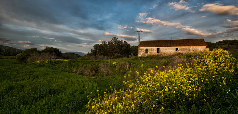 An old abandoned farm house.  Andalucia, Spain, 2014.