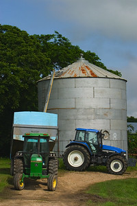 Tractor loading corn in silo at Spanish Lookout, Cayo, Belize.
