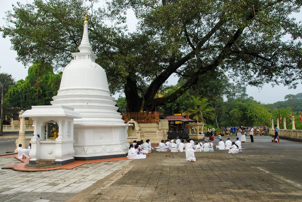 Buddhist prayers at Gatambe Sri Rajopawanaramay, Peradeniya, Sri Lanka