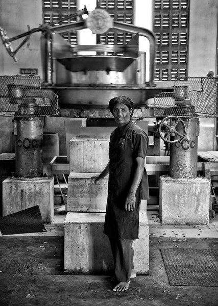 This is Pasant, a tea factory worker in Glenloch tea factory.<br /> <br /> Nuwara Eliya, Sri Lanka, 2014.