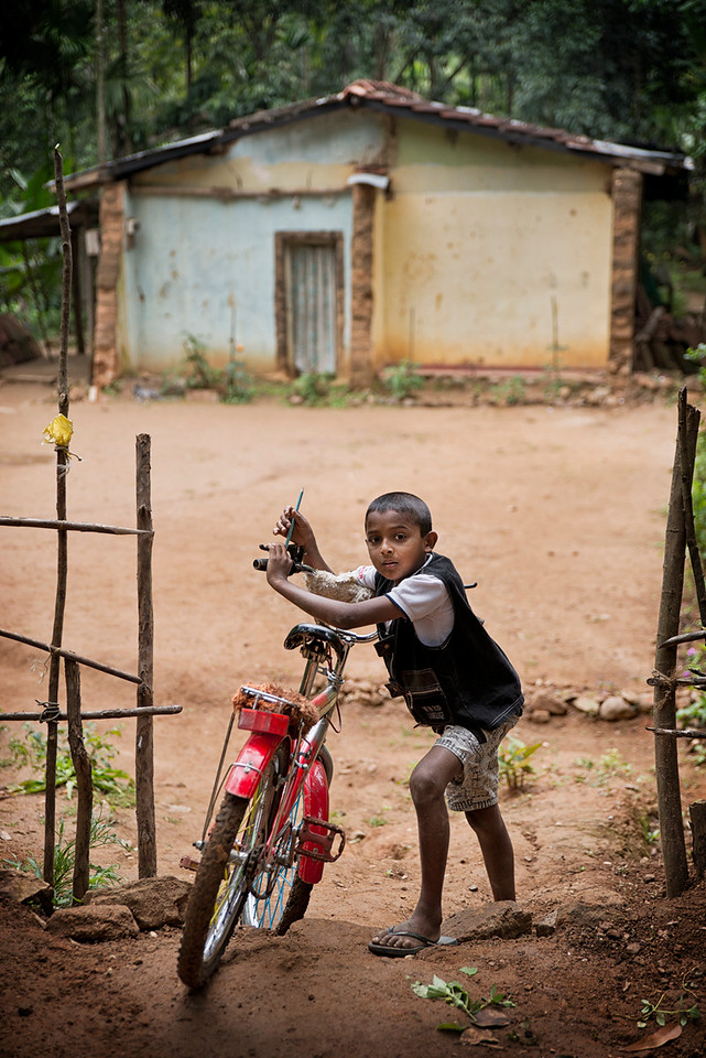 Over 25% of the population of Sri Lanka is aged 14 or below, and the average age is 30. Sri Lanka is one of the fastest growing economies in the World, but the gap between the upper/middle class and the rest of the population is getting ever larger. There is little accurate data to indicate the number of children living on the streets, so the estimates vary dramatically from 1000 to 40,000. The number of child labourers is estimated to be around 100,000 to 500,000, and they are primarily engaged in agricultural work such as rice production.<br /> <br /> Sri Lanka, 2014