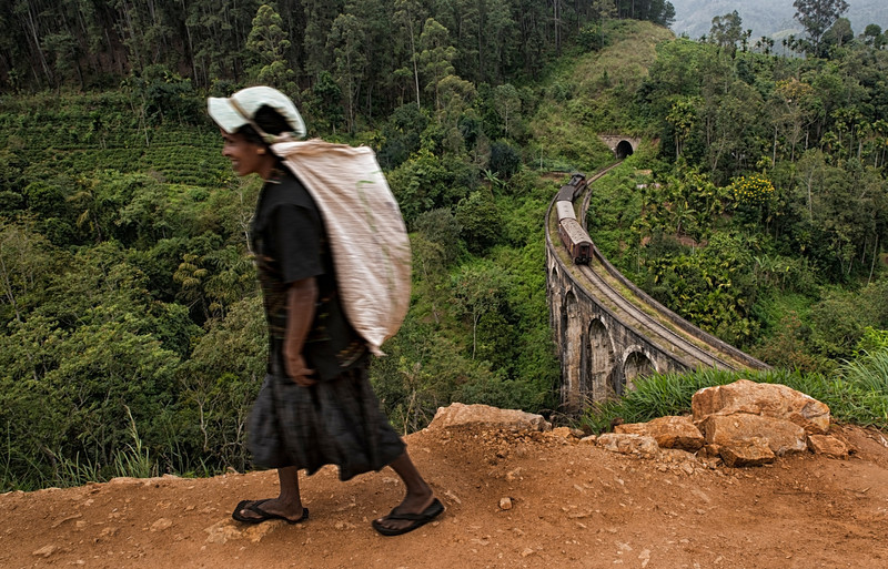 A tea plucker returns home after a hard days work on the plantation. The afternoon train from Kandy to Ella can be seen in the background. <br /> <br /> Ella, Sri Lanka, 2014.