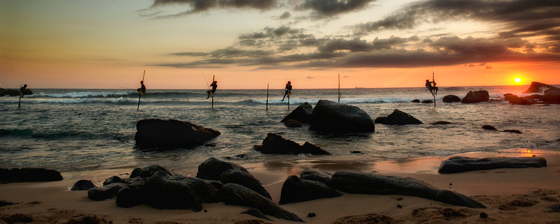 Stilt fishermen at sunset.<br /> <br /> Weligama, Sri Lanka, 2014.