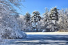Quarter Mile Pond in winter<br /> 2/20/2010