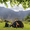 Camping under a mulberry tree
