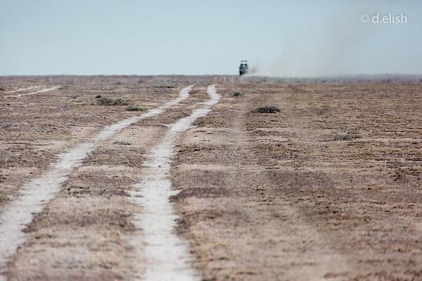 Land Cruiser Escape