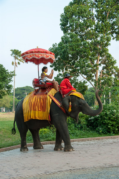 Tourists get an elephant ride in Ayutthaya, Thailand.