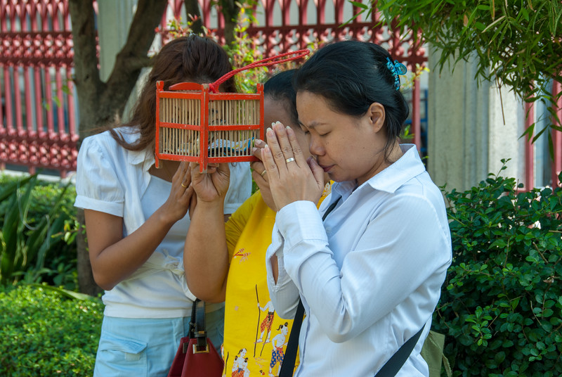 Buddhist pray and release their prayers via bird-release at Wat Intharawihan (หลวงพ่อโตวัดอินทรวิหาร), Bangkok, Thailand. Temple dating to the 14th or 15th century, notable for its 32-meter-high gold Buddha statue. or Wat Intharavihan is a wat located in the Phra Nakhon District of Bangkok, Thailand. The temple dating to the 14th or 15th century, is notable for its 32-meter-high gold Buddha statue.