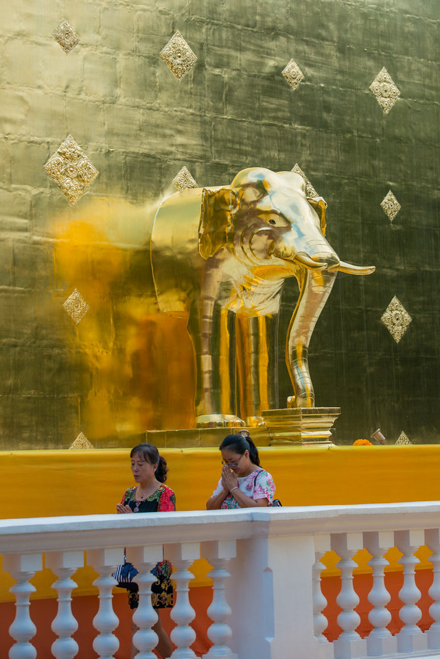Golden elephant at Wat Phra Singh Woramahawihan (วัดพระสิงห์วรมหาวิหาร ), 14th-century Buddhist temple boasting gold & copper Buddhas, murals & ancient manuscripts.Chiang Mai, Thailand.