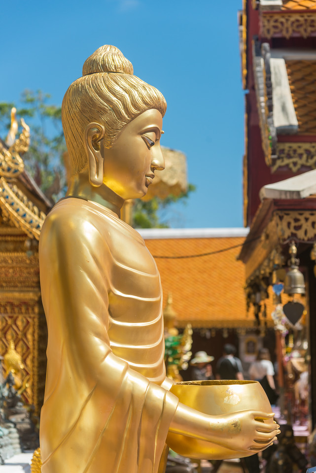"Golden Buddha statue. Wat Phrathat Doi Suthep (วัดพระธาตุดอยสุเทพ)  is a Theravada wat in Chiang Mai Province, Thailand. The temple is often referred to as ""Doi Suthep"" although that is the name of the mountain where it's located. This is a sacred site to many Thai people and is also referred as the ornate temple complex. The complex features a golden stupa, statues & a legendary white elephant shrine."
