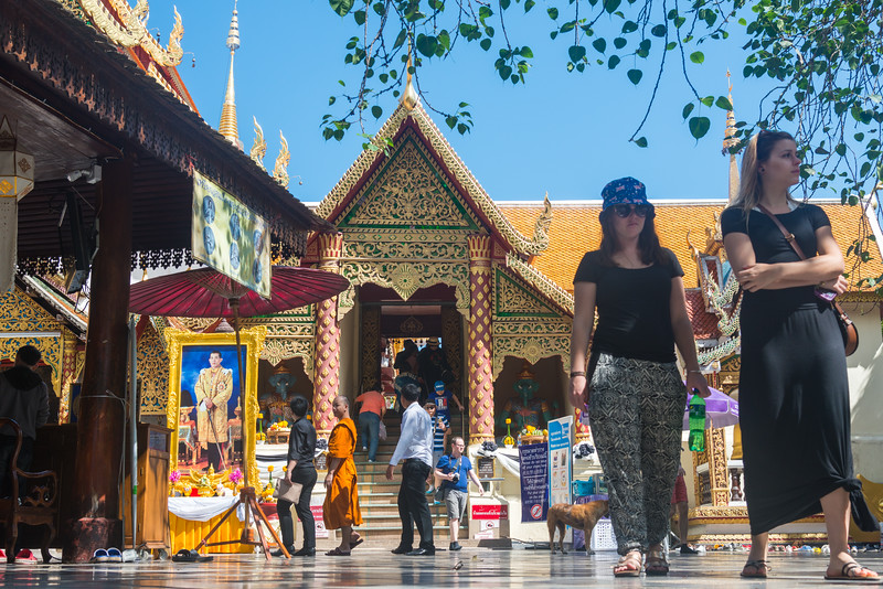 """Wat Phrathat Doi Suthep (วัดพระธาตุดอยสุเทพ)  is a Theravada wat in Chiang Mai Province, Thailand. The temple is often referred to as """"Doi Suthep"""" although that is the name of the mountain where it's located. This is a sacred site to many Thai people and is also referred as the ornate temple complex. The complex features a golden stupa, statues & a legendary white elephant shrine."""