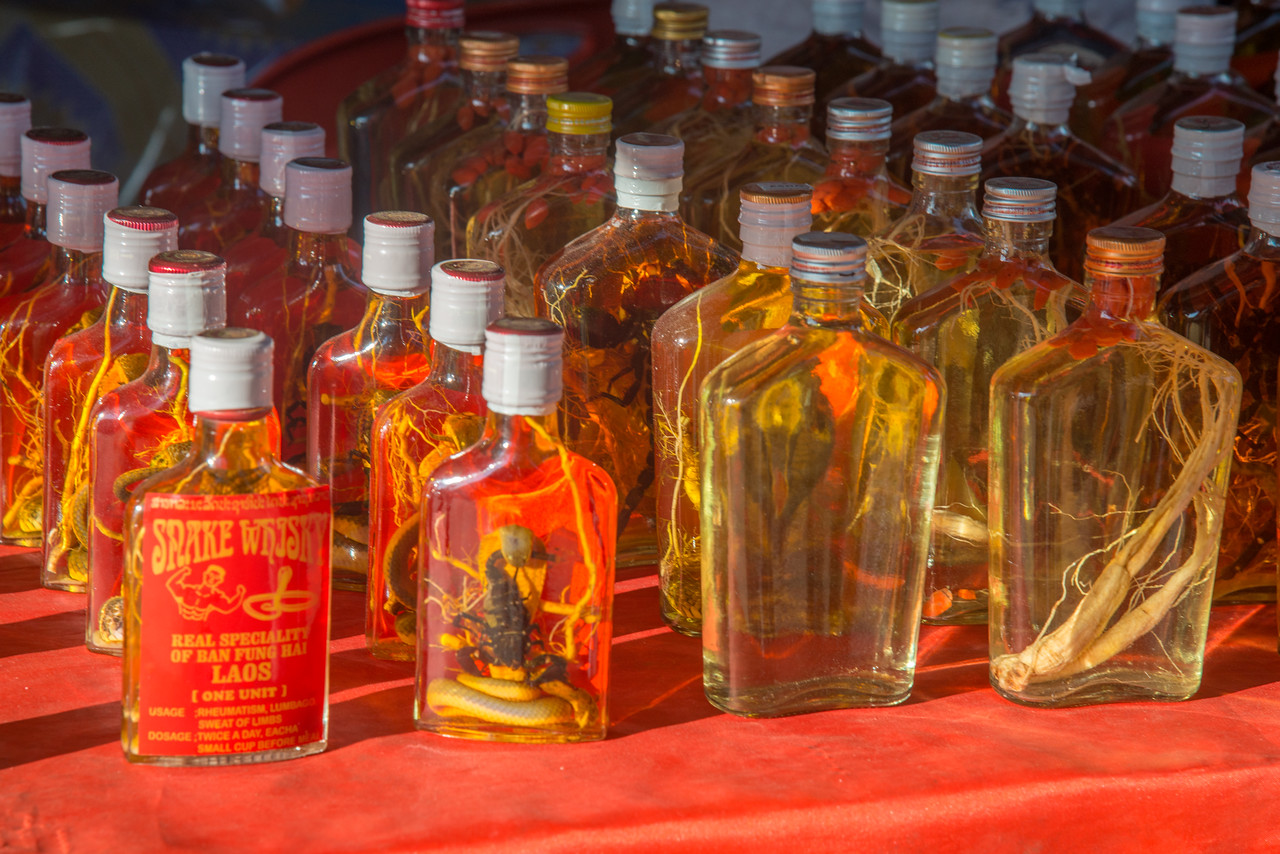 Snake and other reptile whisky in Laos.<br /> <br /> Across the Mekong River from Thailand to Don Sao, Laos is the Golden Triangle. The area where Thailand, Myanmar and Laos meet on the mighty Mekong River. Historically this area was well known for opium trade on the no-man-island between these three countries. The river enabled opium to be transported from Myanmar and Thailand to China and Southern Southeast Asia. Today you can find knock off designer purses to authentic snake whiskey including free shots of the snake/scorpion dunked whiskey.