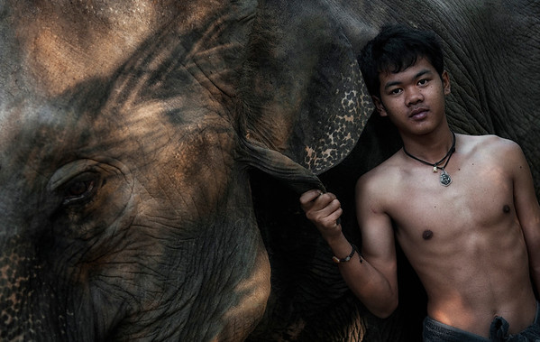 Usually, a mahout starts as a boy in the 'family business' when he is assigned an elephant early in its life and they would be attached to each other throughout the elephant's life.