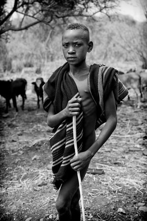 This is Olibesin, a young Shepherd from the Mursi tribe. The Mursi cultivate along the Omo from September to February each year and then they return to the inland grassy plains to cultivate during the rainy season from March and August. People cultivate sorghum and corn. Sometimes they grow beans and pumpkins.  Cattle provide milk which is often eaten with porridge.  Cattle are vital in times of drought, since they can be exchanged in local towns for money to buy grain.  Omo Valley, Southern Ethiopia, 2013.