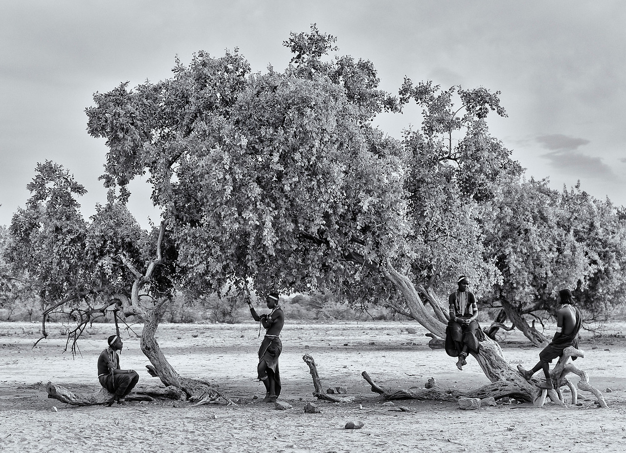 Women from the Arbore tribe under a tree.<br /> <br /> Omo Valley, Southern Ethiopia, 2013.