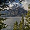 Tetons over Jenny Lake, #0989