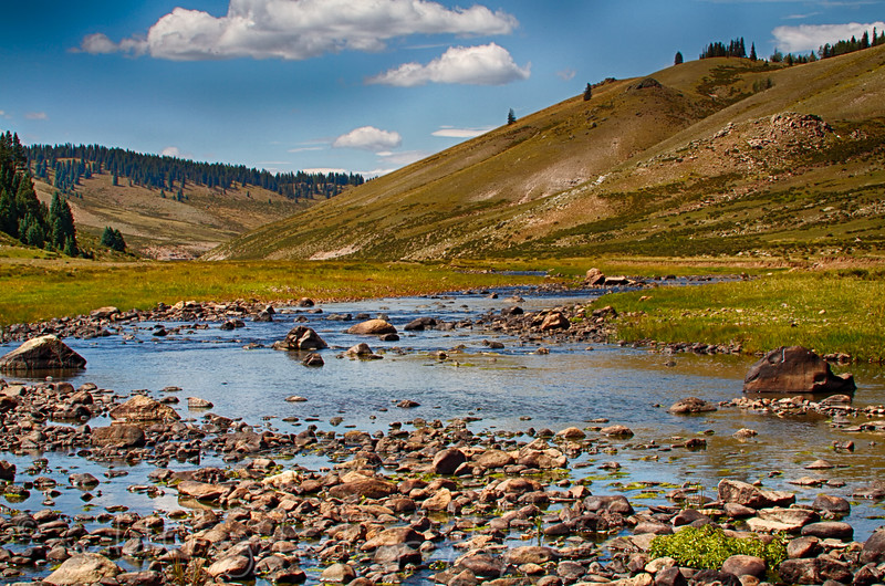 High country river,best fishing around.