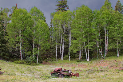 Junk and Thunder, Storm coming in over the Aspens
